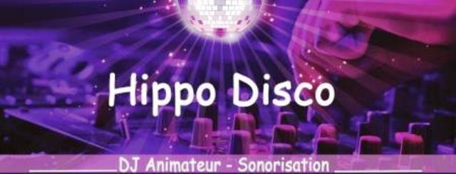 Hippo disco dj et musiciens yvelines 78 guyancourt for Visite yvelines 78