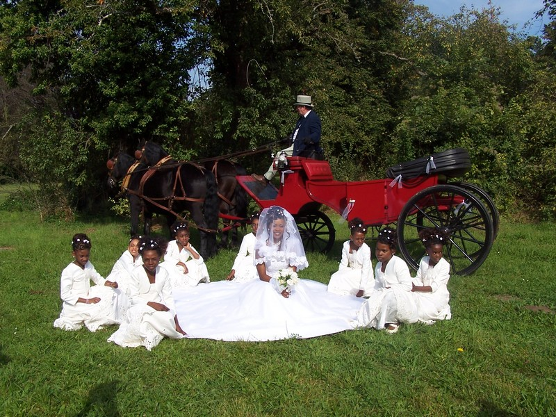 mariage en calche - Mariage En Caleche