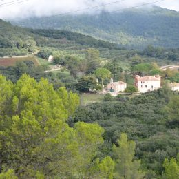 Domaine De Tourris