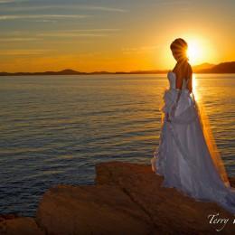 TERRY WHITE PHOTOS