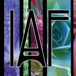 IMMANENCE ATELIER FLORAL