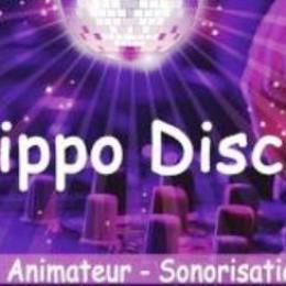 HIPPO DISCO