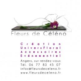 FLEURS DE CÉLÉNO
