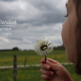 DELPHINE BARILLOT GRAPHISTE CRÉATIVE