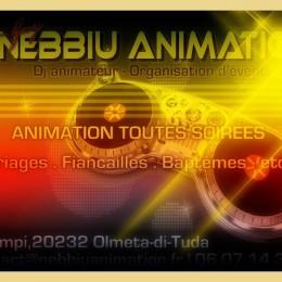 NEBBIU ANIMATION