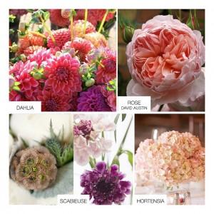 fleurs-saison-mariage-automne