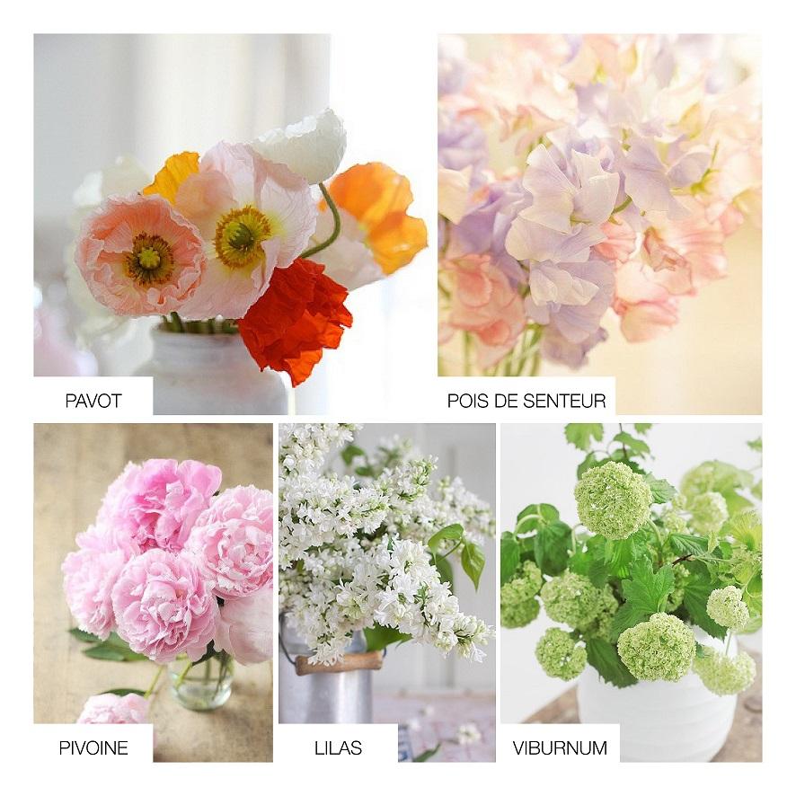 Fleur De Septembre Pour Mariage