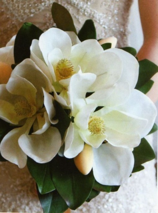 bouquet de magnolias