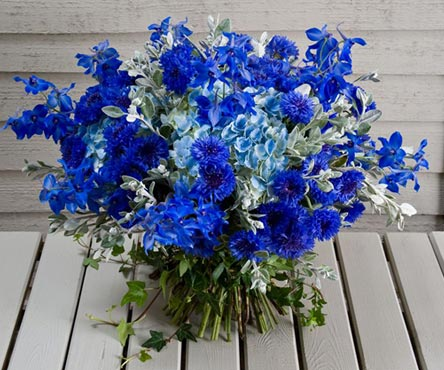 bouquets de bleuets