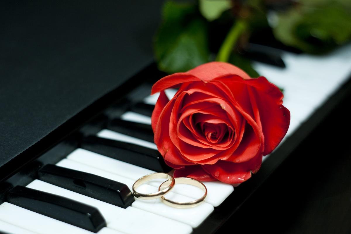 mariage-une-ceremonie-sans-fausse-note_746_825