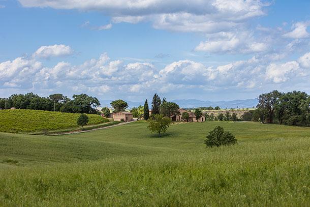 Villa di Montesoli 2