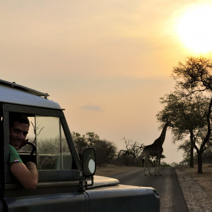 afrique du sud safari