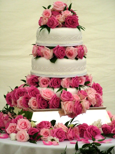 6 wedding cake roses rose