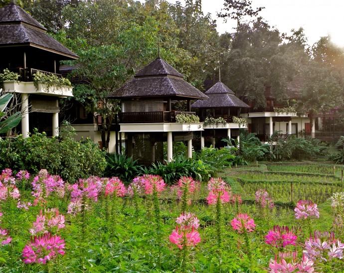 four seasons thailande ok