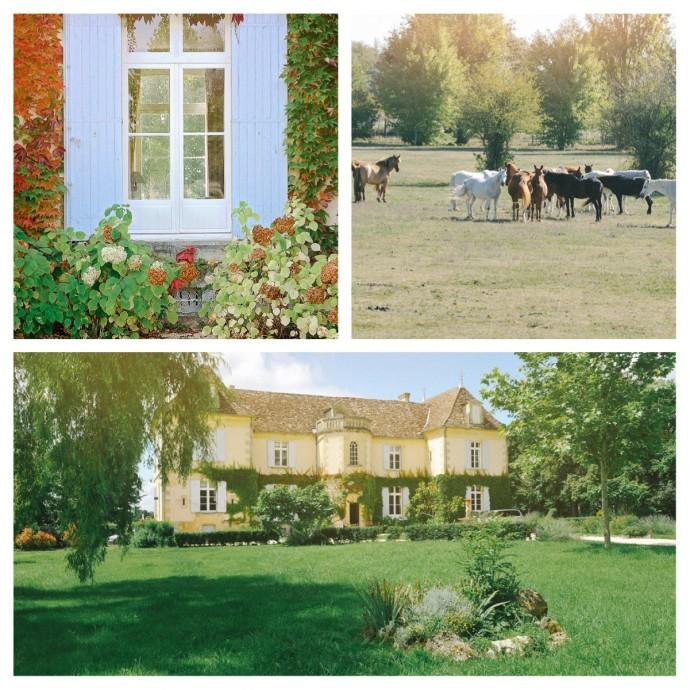 2-mariage-equestre-reception