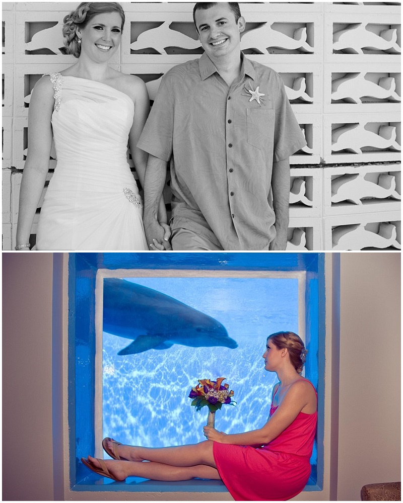 Montage-mariage-dauphin-4
