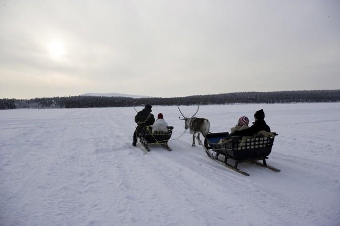 Reindeer driving, Lapland