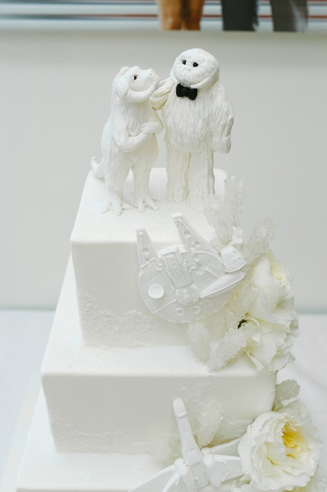 mariage star wars jennifer joshua 6