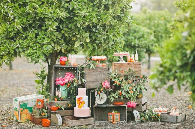mariage tangerine  (6)