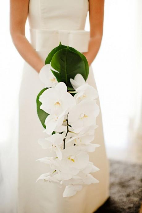 mon mariage  u0026quot jardin vert et esprit zen u0026quot
