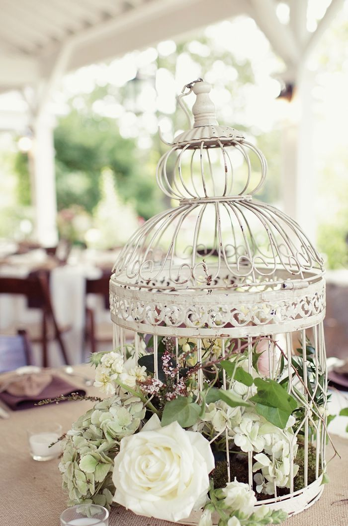 Image Result For Cheap Decorative Bird Cages