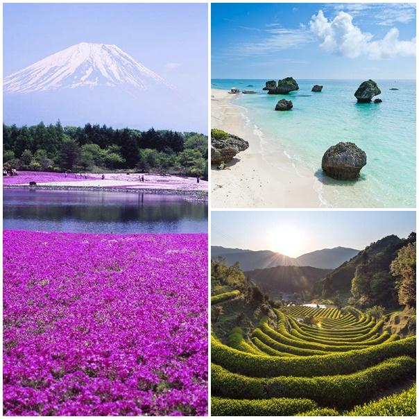 montage paysages japon