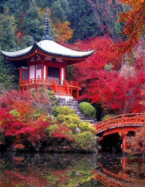 Japon : vivre sa lune de miel au pays du soleil levant ...