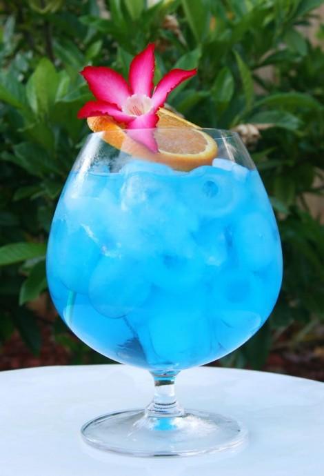 cocktail de mariage sous les tropiques
