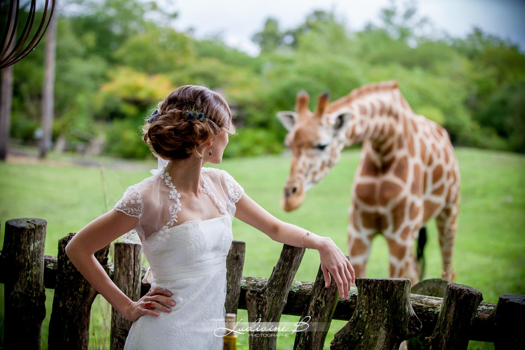 mariee qui regarde girafe mariager africa