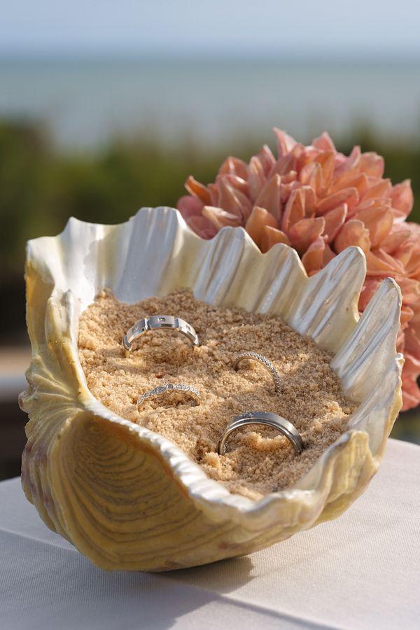 porte-alliance coquillage mariage bord de mer