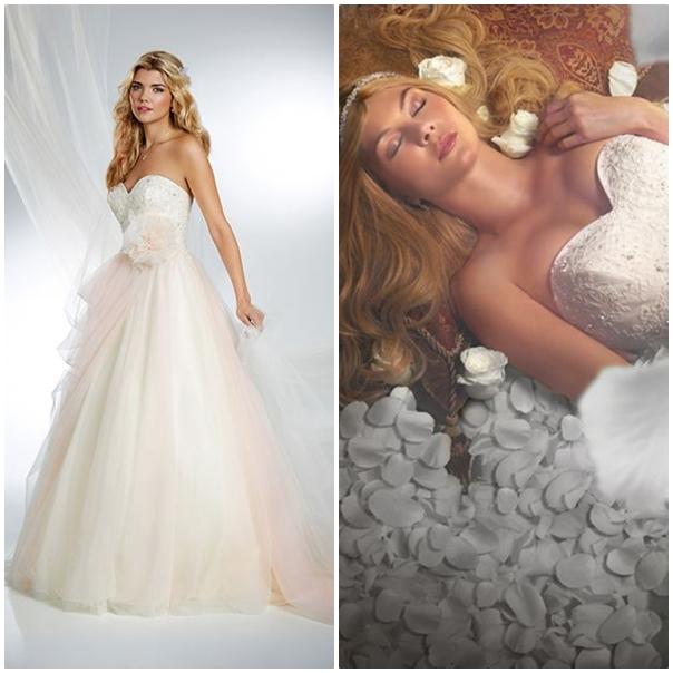 Robe de mari e la princesse et la grenouille id es et d for Robes de mariage du monde de disney