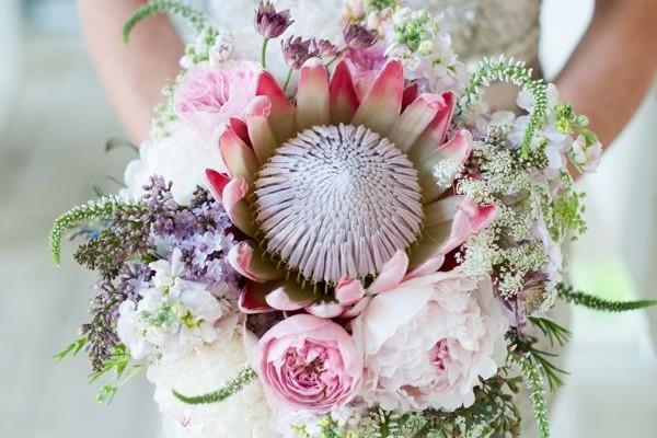 bouquet de fleur XXL plante grasse une