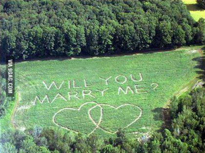 news demande en mariage impressionnante