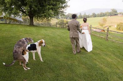 photo mariage fun 11