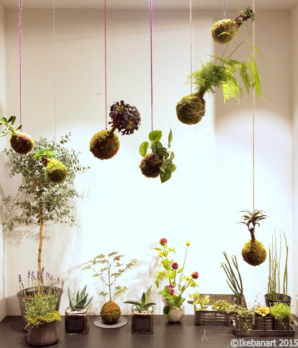 5 tendances florales qui font le show en 2016 for Comdecoration florale maison