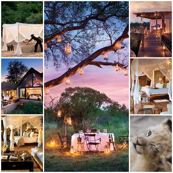 Lune de miel Lion Sands Afrique du Sud
