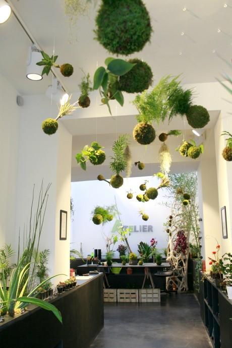 5 tendances florales qui font le show en 2016 for Tendance jardin 2016