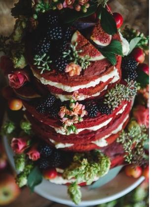 nake cake 20