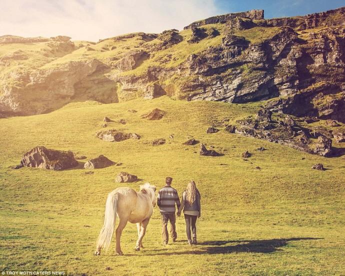 cheval islande