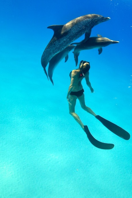 les bahamas en voyage de noces (5)