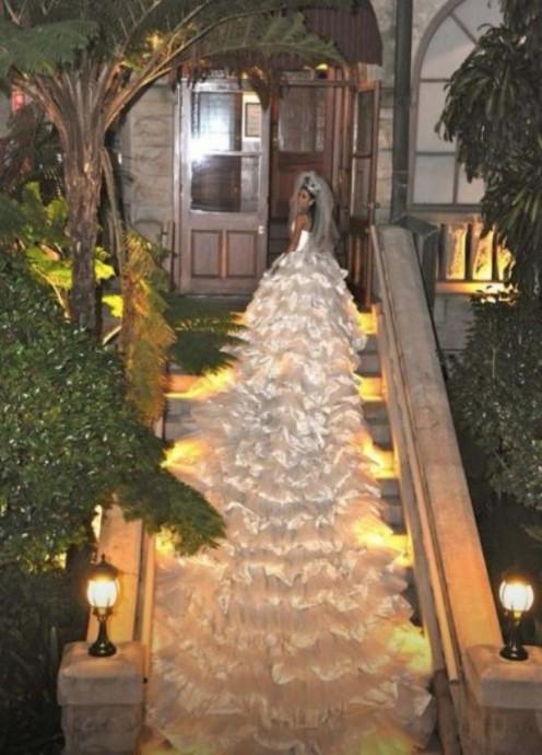la robe avecla plus longue traine