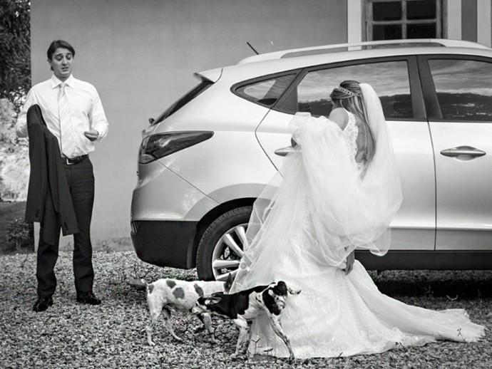mariage-chien-pipi-robe