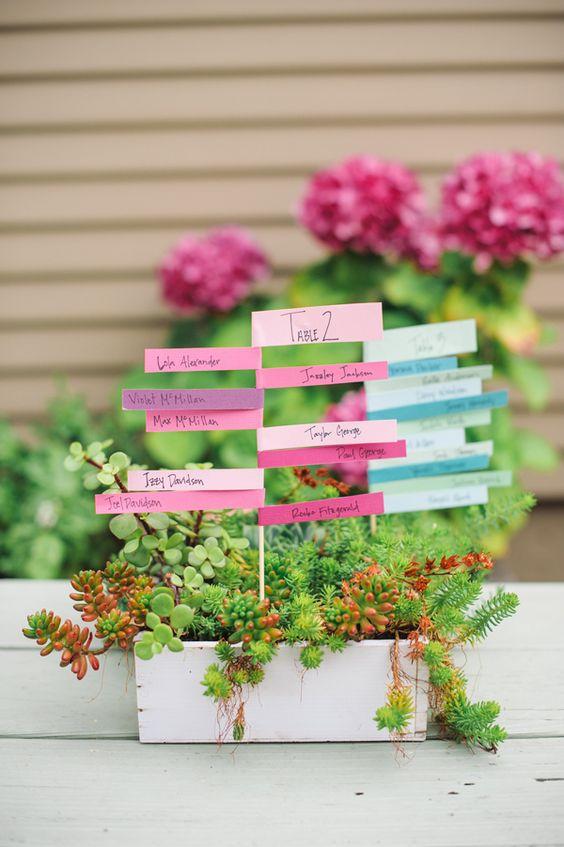 pot de plantes marques places roses