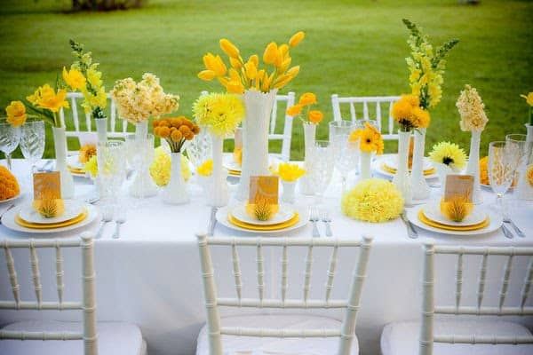 theme-de-mariage-buttercup-reception2