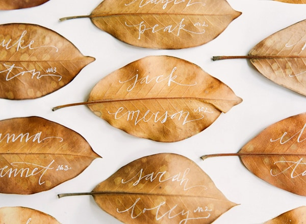 feuilles dautomnes calligraphies marque place mariage