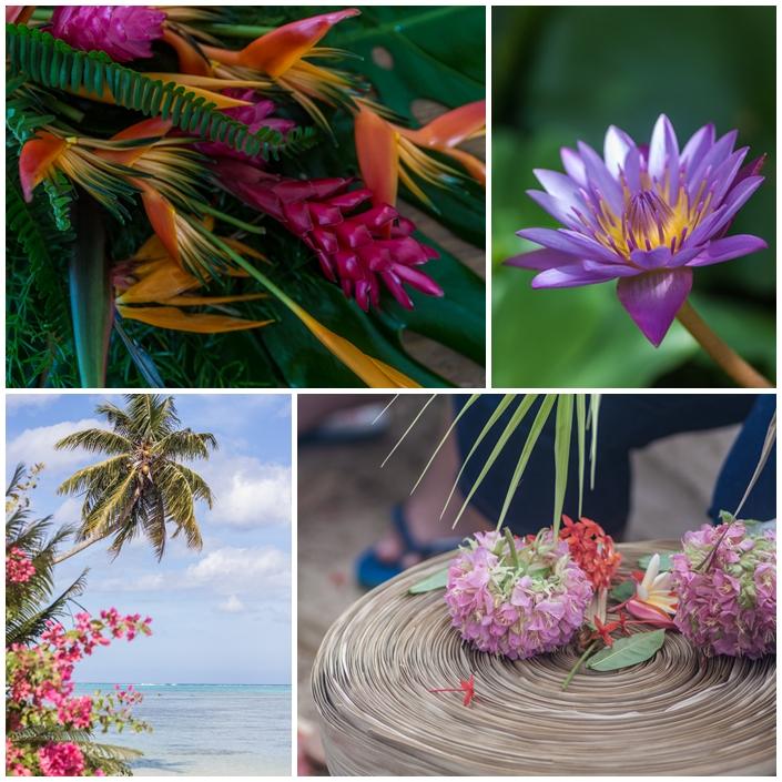 Planche mariage alizee et olivier fleurs