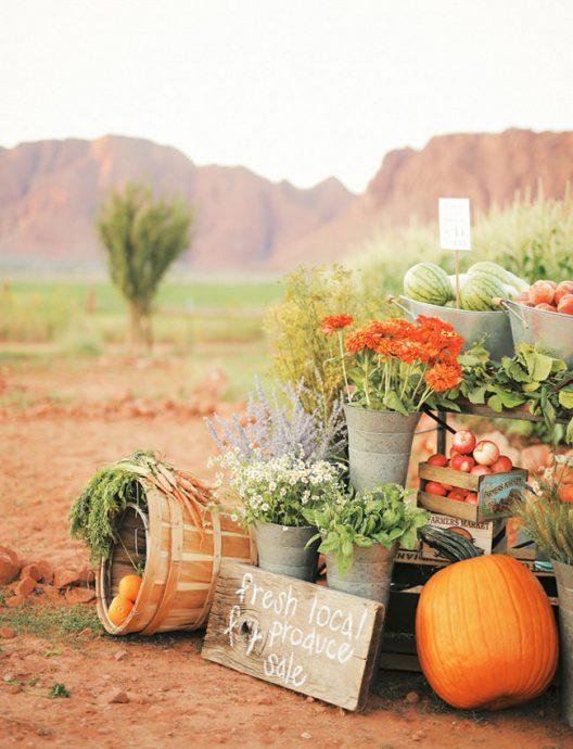 buffet ferme legume orange