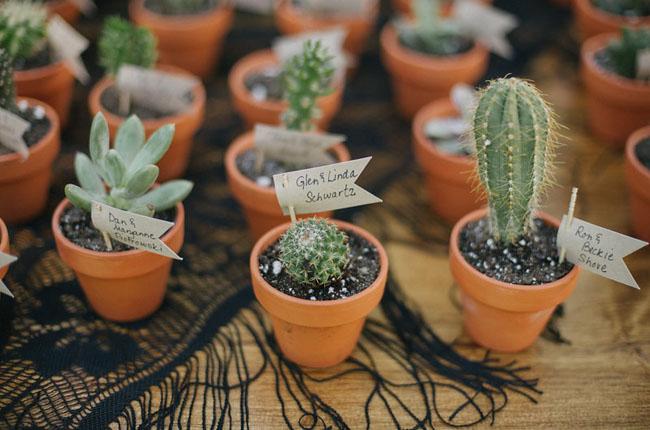 cadeau invites cactus