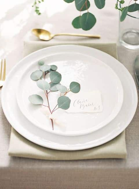 eucalyptus decoration assiette