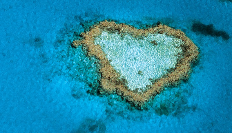 Whitsunday_heart_reef